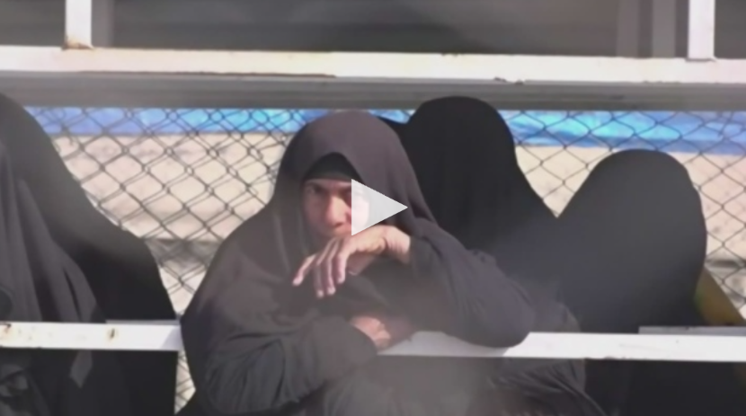 Germany and Denmark repatriate women and children from Syria. Will Canada follow?